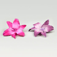 Glitter Plumeria Alligator Clips