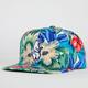 AMERICAN NEEDLE Kona Cubs Mens Snapback Hat