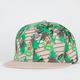 ICE CREAM Shake N Bake Mens Snapback Hat