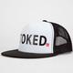 QUIKSILVER Terg Ferg Stoked Mens Trucker Hat