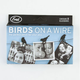 FRED & FRIENDS Birds On A Wire Photo Clips
