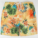 WELLEN Paradise Mens Volley Boardshorts