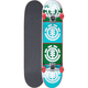 ELEMENT Quadrant Forestal Full Complete Skateboard - As Is