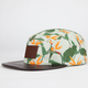 LIRA Paradise Mens 5 Panel Hat