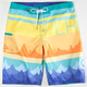 LRG Seasoned Mens Boardshorts