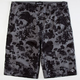 LRG Earth Lessons Mens Shorts