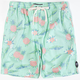BILLABONG Mario Mens Volley Shorts