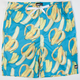 NEFF Going Bananas Mens Hot Tub Volley Shorts
