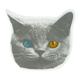 ODD FUTURE Big Cat Sticker