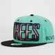 BLVD Trees 2 Mens Snapback Hat