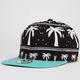 BLVD Holiday Mens Strapback Hat