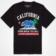 RIOT SOCIETY Space Fill Cali Repulbic Boys T-Shirt