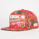 DGK Permanent Vacation Mens Snapback Hat