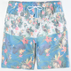LRG Vaca Mens Volley Shorts