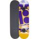 PLAN B Paul Rodriguez Box Set Full Complete Skateboard