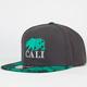 AMERICAN NEEDLE Beryl Cali Mens Strapback Hat