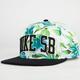 NIKE SB Big Island Pro Mens Snapback Hat