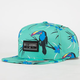 BILLABONG Toucan Too Mens Snapback Hat