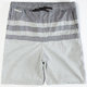 HURLEY Chambles Mens Volley Shorts