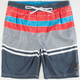 O'NEILL Cartographer Mens Volley Boardshorts