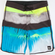 QUIKSILVER Spray Performer Mens Boardshorts