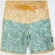 RVCA Valizadeh Leaves Mens Boardshorts