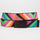 BUCKLE-DOWN Striped Web Belt