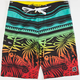 RUSTY Headsted Mens Boardshorts