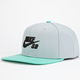 NIKE SB Iconic Mens Snapback Hat