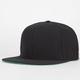NIKE SB Woodgrain Mens Strapback Hat