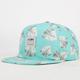 LIRA Haves Mens Snapback Hat