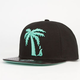 BLVD Tree Schooler Mens Snapback Hat