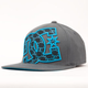 DC SHOES Backyard Mens Hat