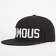 FAMOUS STARS & STRAPS Seeing Alpine Mens Snapback Hat