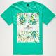 ELEMENT Desert Oasis Mens T-Shirt