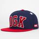 DGK Worldwide Mens Snapback Hat
