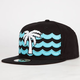 BLVD Waves Mens Strapback Hat