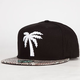 BLVD Scales Mens Snapback Hat