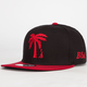 BLVD Palm Tree Boys Snapback Hat