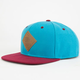 NEFF All Day Mens Snapback Hat