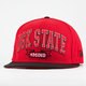 DGK State of Mind New Era Mens Fitted Hat
