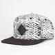 LRG Bird Watchers Mens Snapback Hat