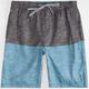 VALOR New Troupe Mens Hybrid Shorts