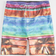 MICROS Luau Mens Volley Shorts