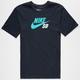 NIKE SB Dri-FIT Icon Logo Mens T-Shirt