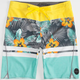 RIP CURL Mirage Aggrofloral Mens Boardshorts