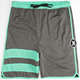 HURLEY Dri-FIT Block Party Mesh Mens Shorts