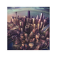 FOO FIGHTERS Sonic Highways LP