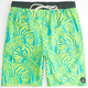 VOLCOM Above Board Mens Volley Boardshorts