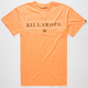 BILLABONG Estate Mens T-Shirt